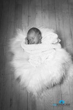 Dafotograf Nyfødt portræt
