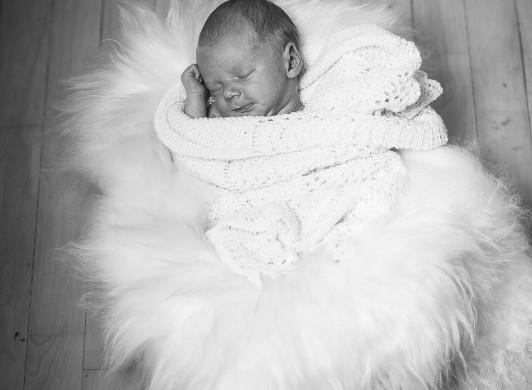 Dafotograf Baby Fotografering